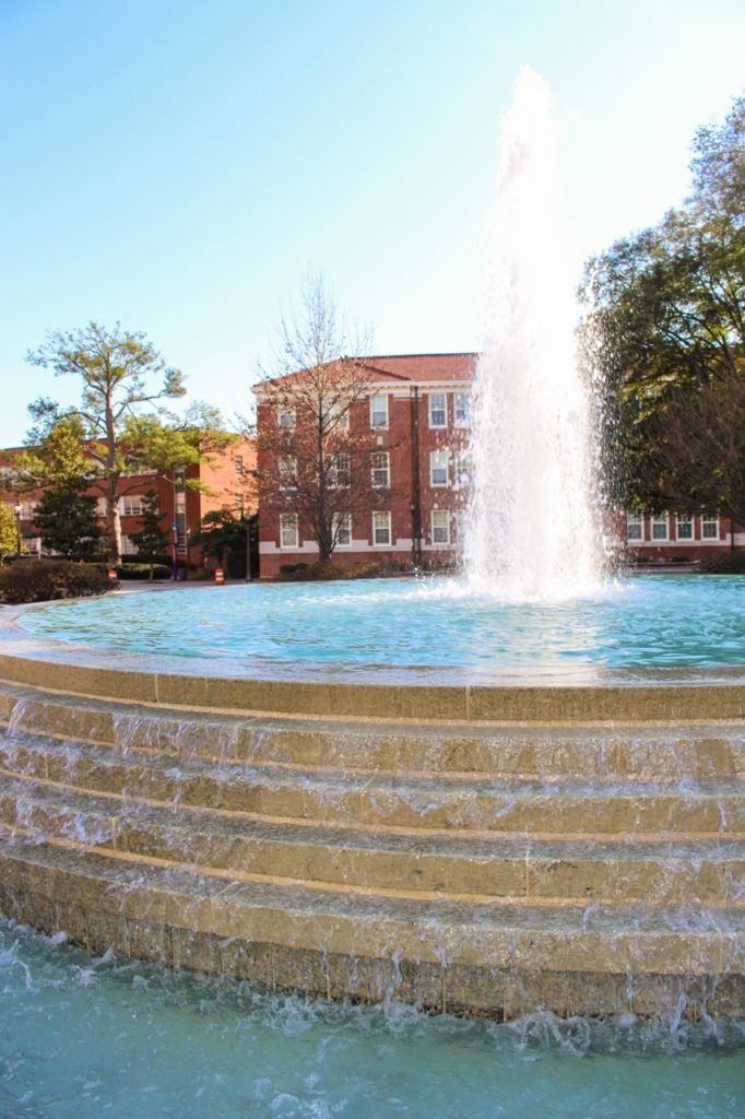 ECU-Fountain-Close-Up (853x1280)